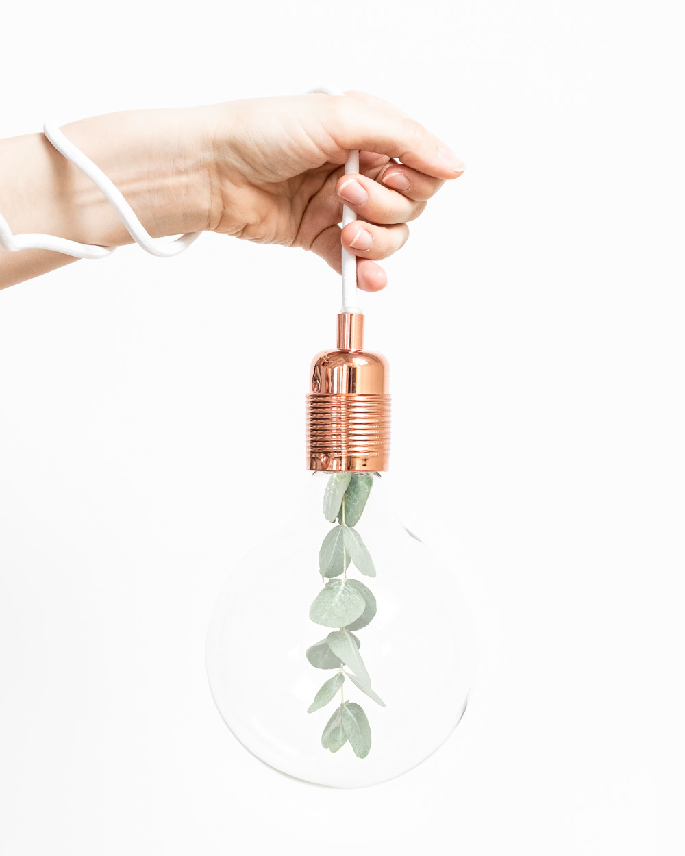 Female hand holding lamp with eucalyptus inside - by The Product Stylist
